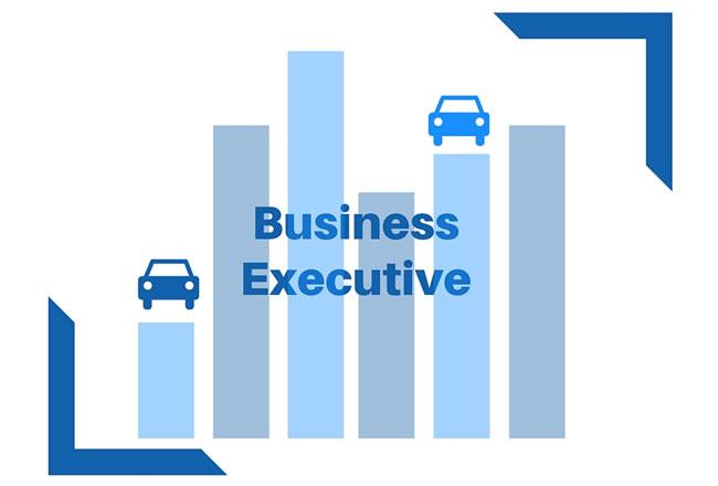 Business Executive Business Simulation