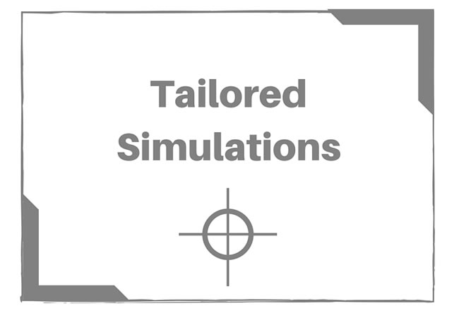 Tailored Business Simulations